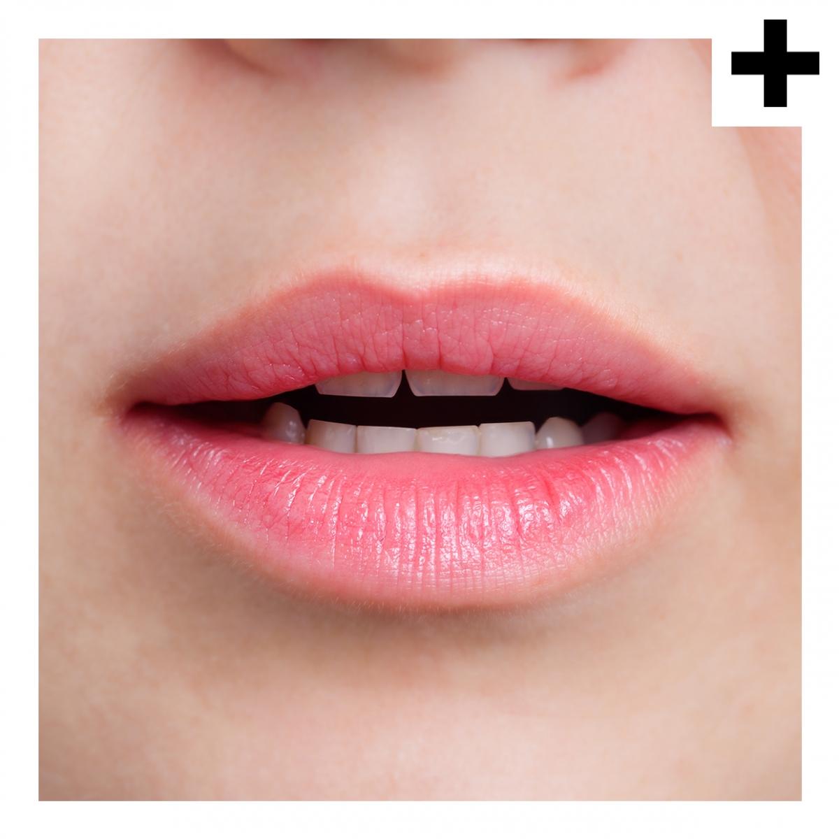 Imagen en la que se ve el plural del concepto boca