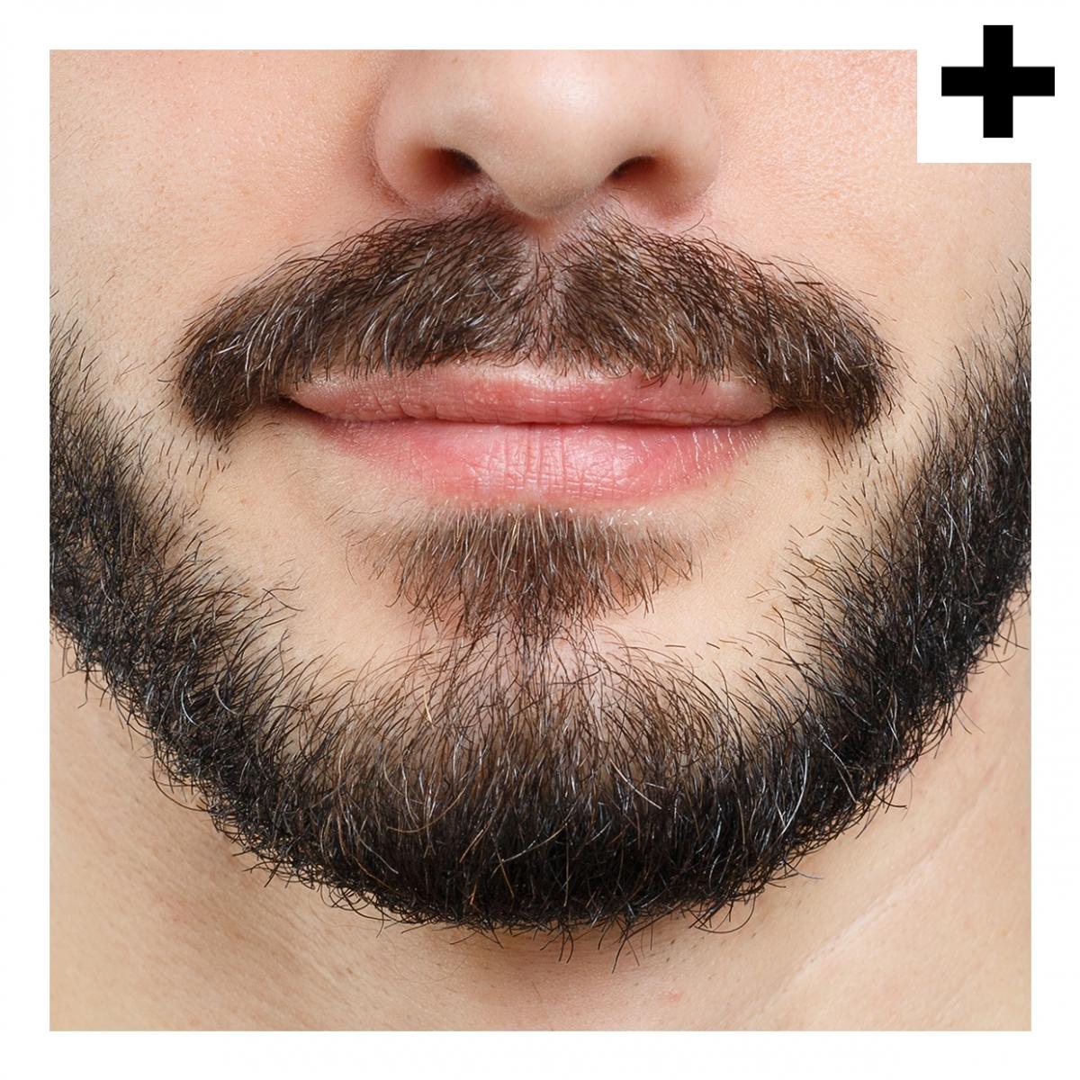 Imagen en la que se ve el plural del concepto barba