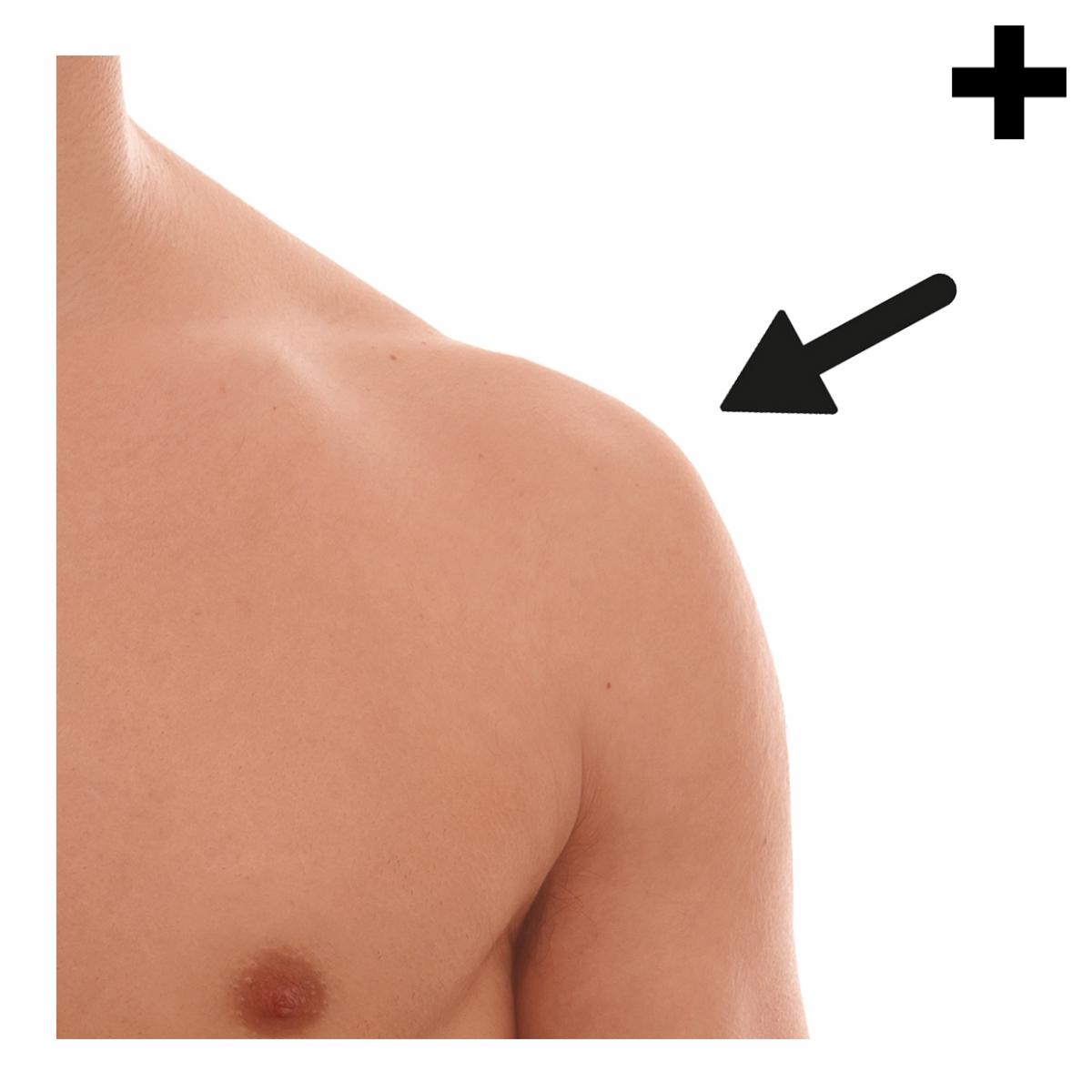Imagen en la que se ve el plural del concepto hombro