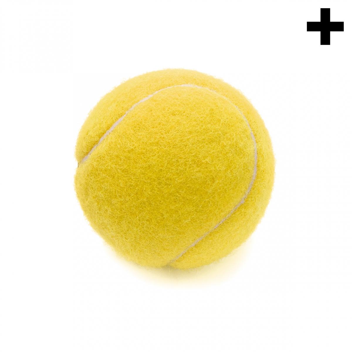 Imagen en la que se ve el plural del concepto pelota de tenis