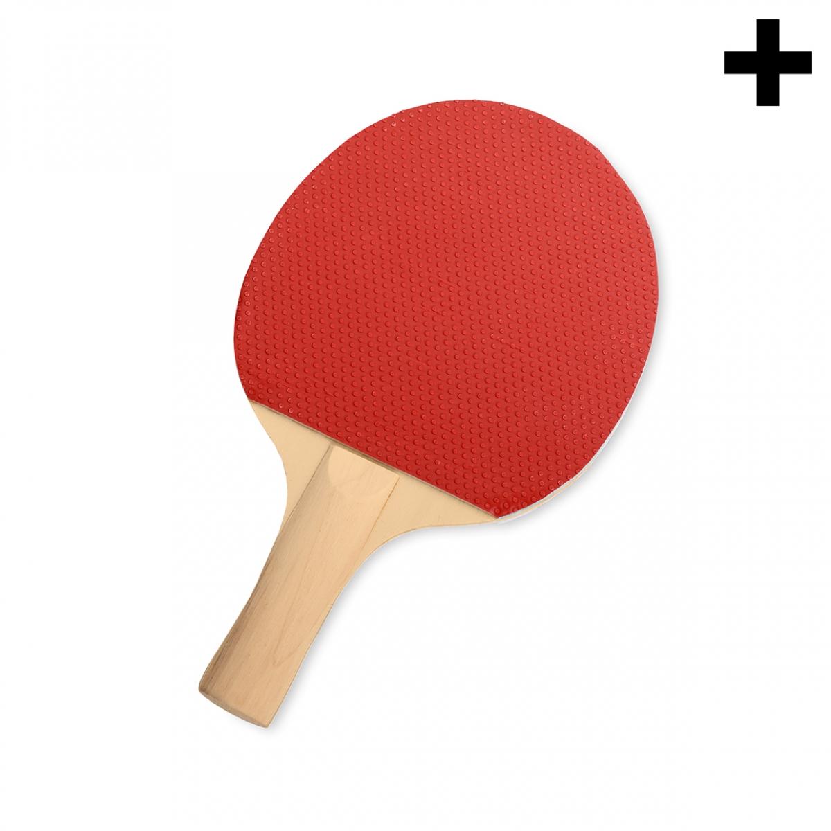 Imagen en la que se ve el plural del concepto raqueta de ping-pong