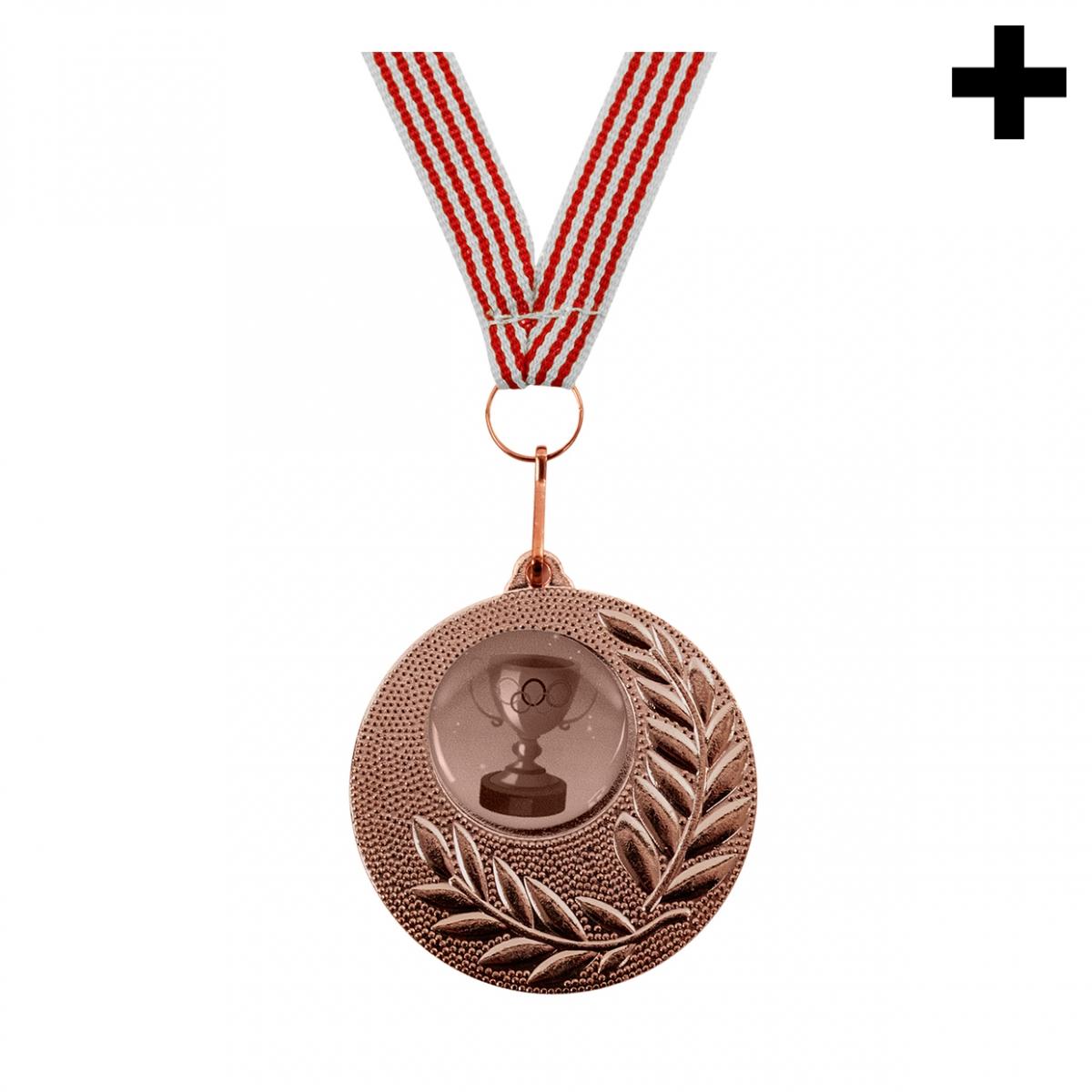 Imagen en la que se ve el plural del concepto medalla de bronce