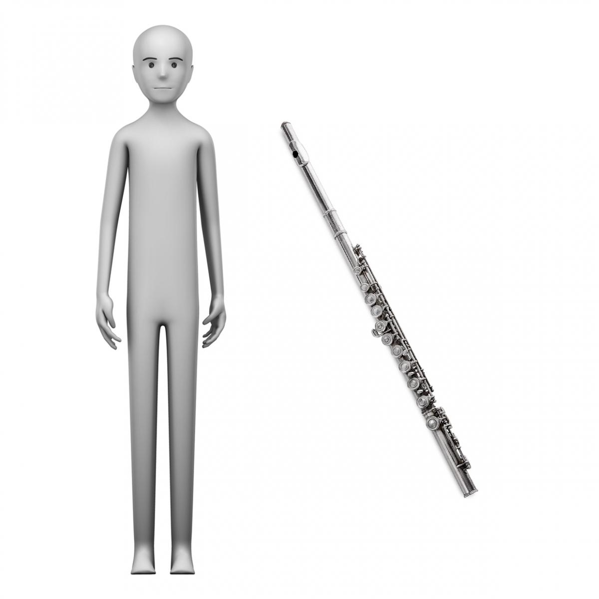 Imagen en la que se ve el concepto de profesión flautista