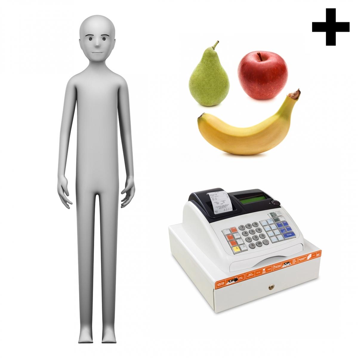 Imagen en la que se ve el plural del concepto frutero o frutera