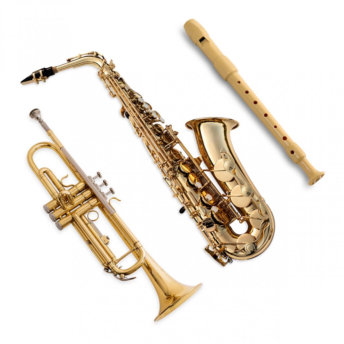 Imagen en la que aparece el concepto genérico de instrumentos de viento