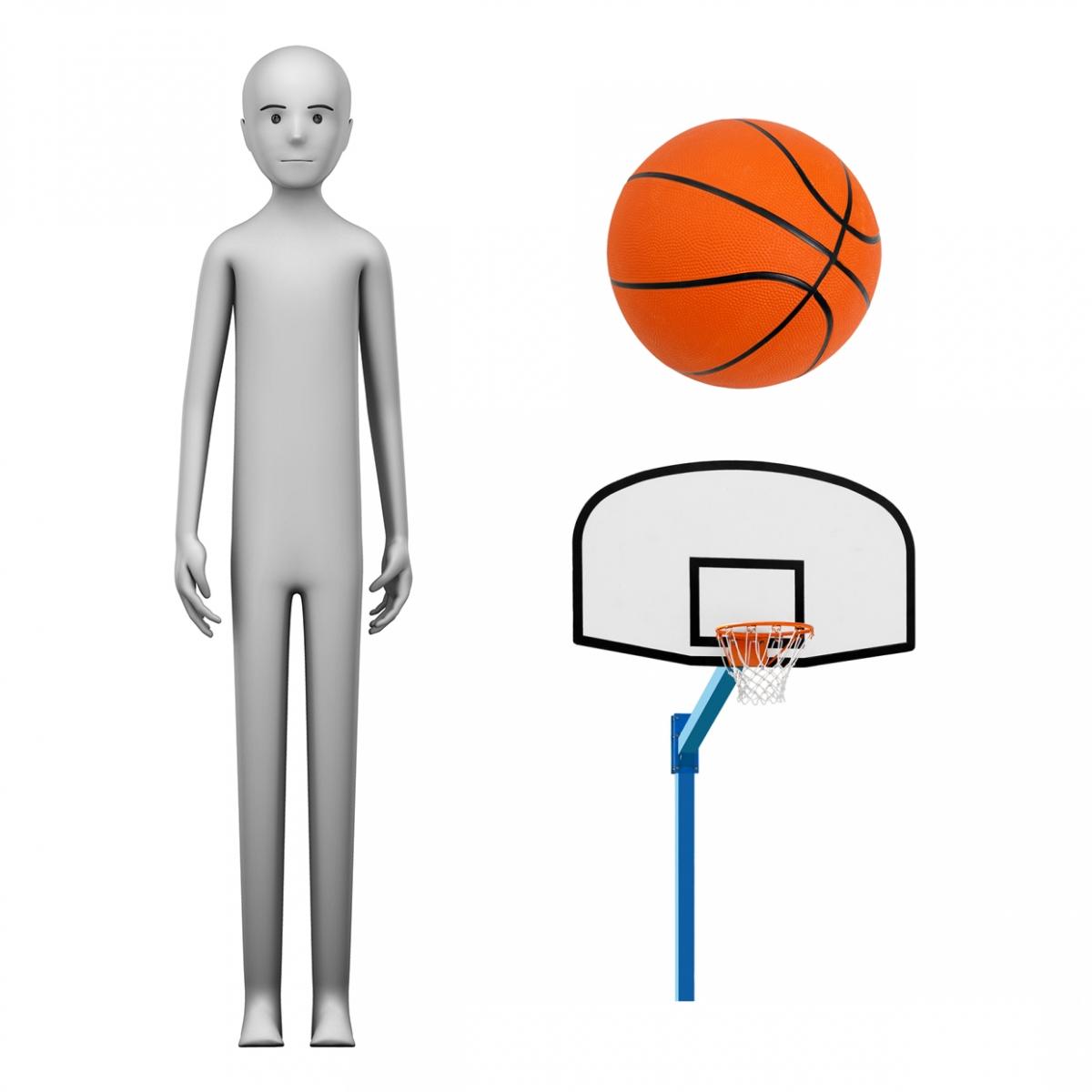 Imagen en la que se ve el concepto de jugador o jugadora de baloncesto