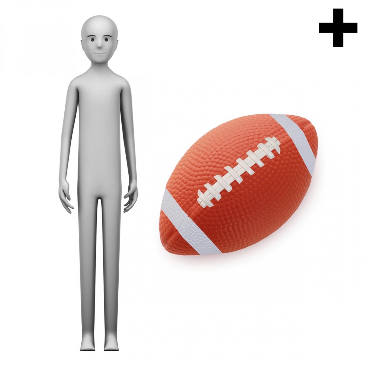 Imagen en la que se ve el plural del concepto jugador de rugby