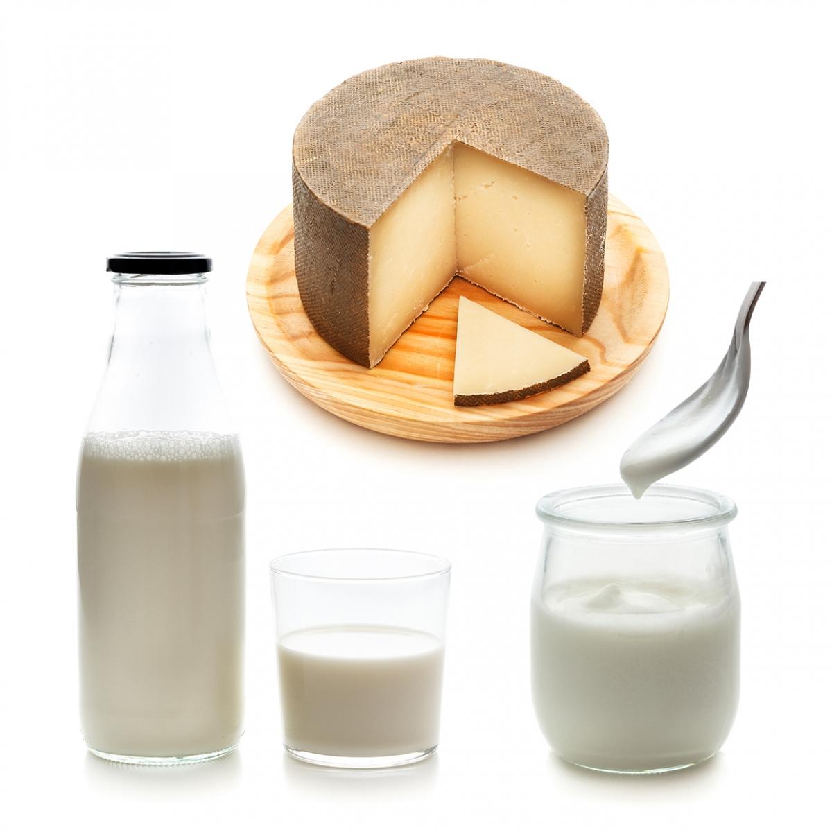 Imagen en la que se ven tres productos lácteos: leche, yogur y queso