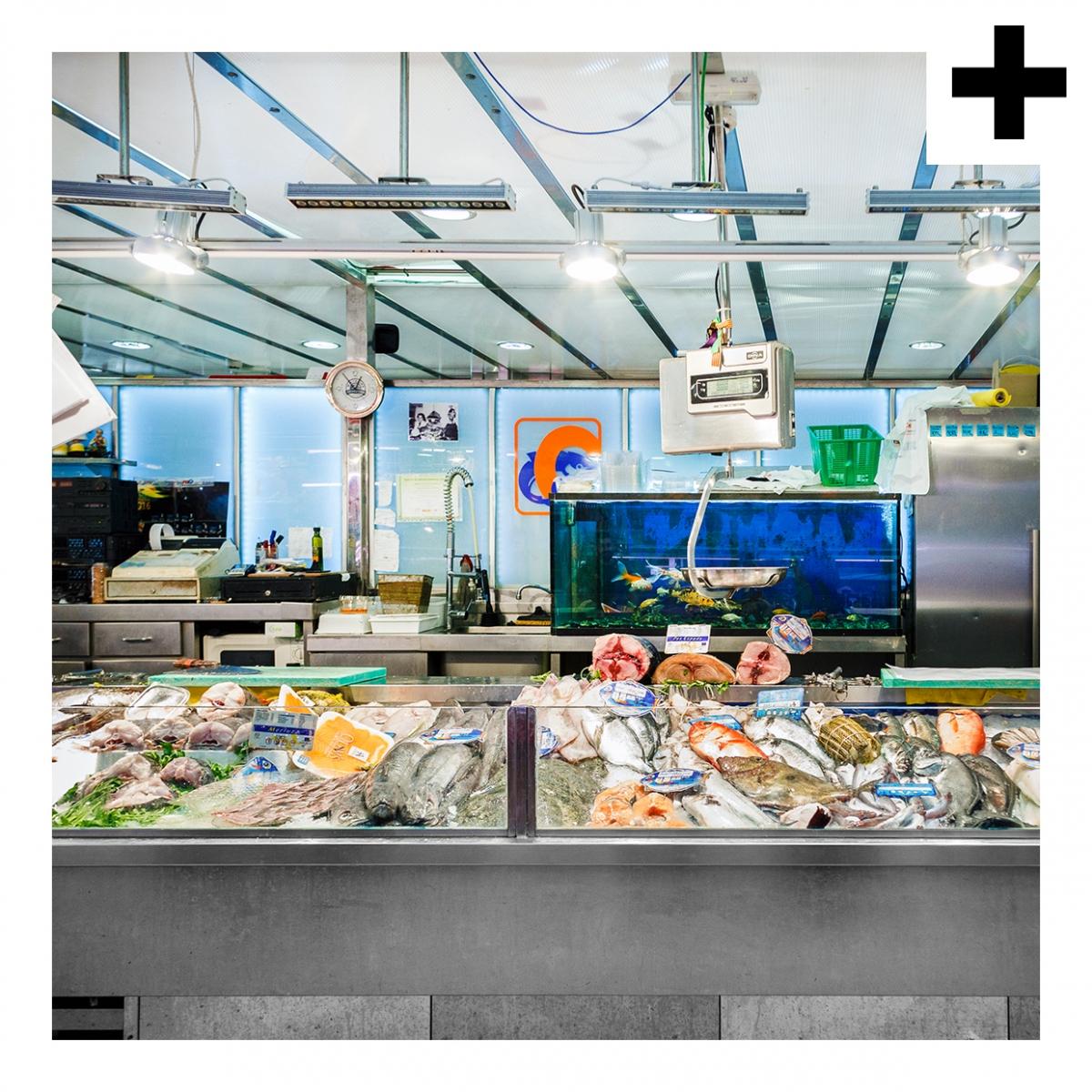 Imagen en la que se ve el plural del concepto pescadería