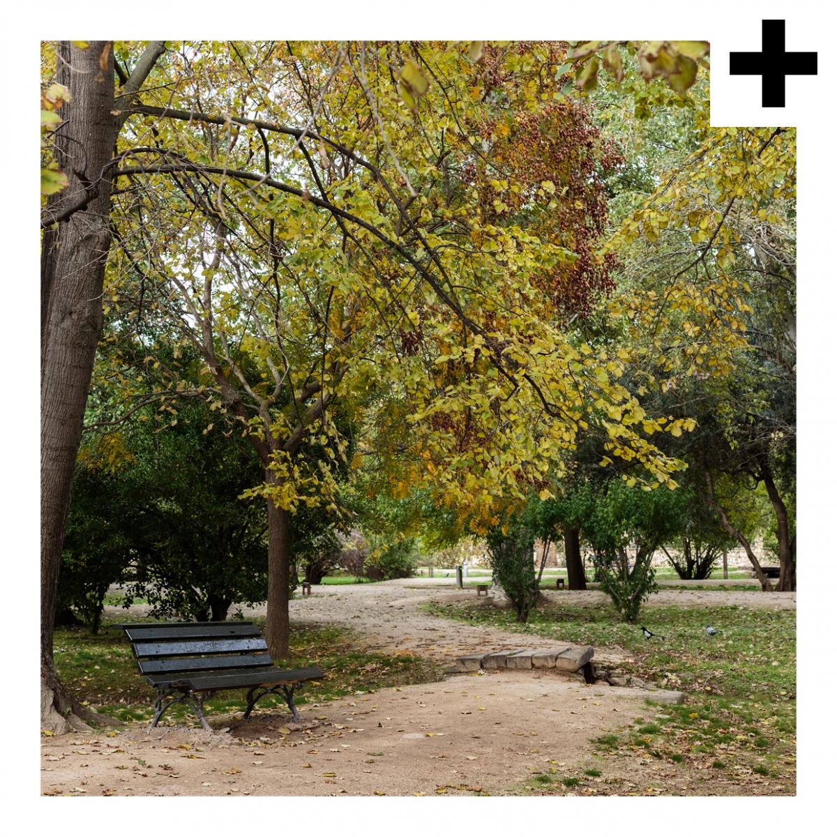 Imagen en la que se ve el plural del concepto parque
