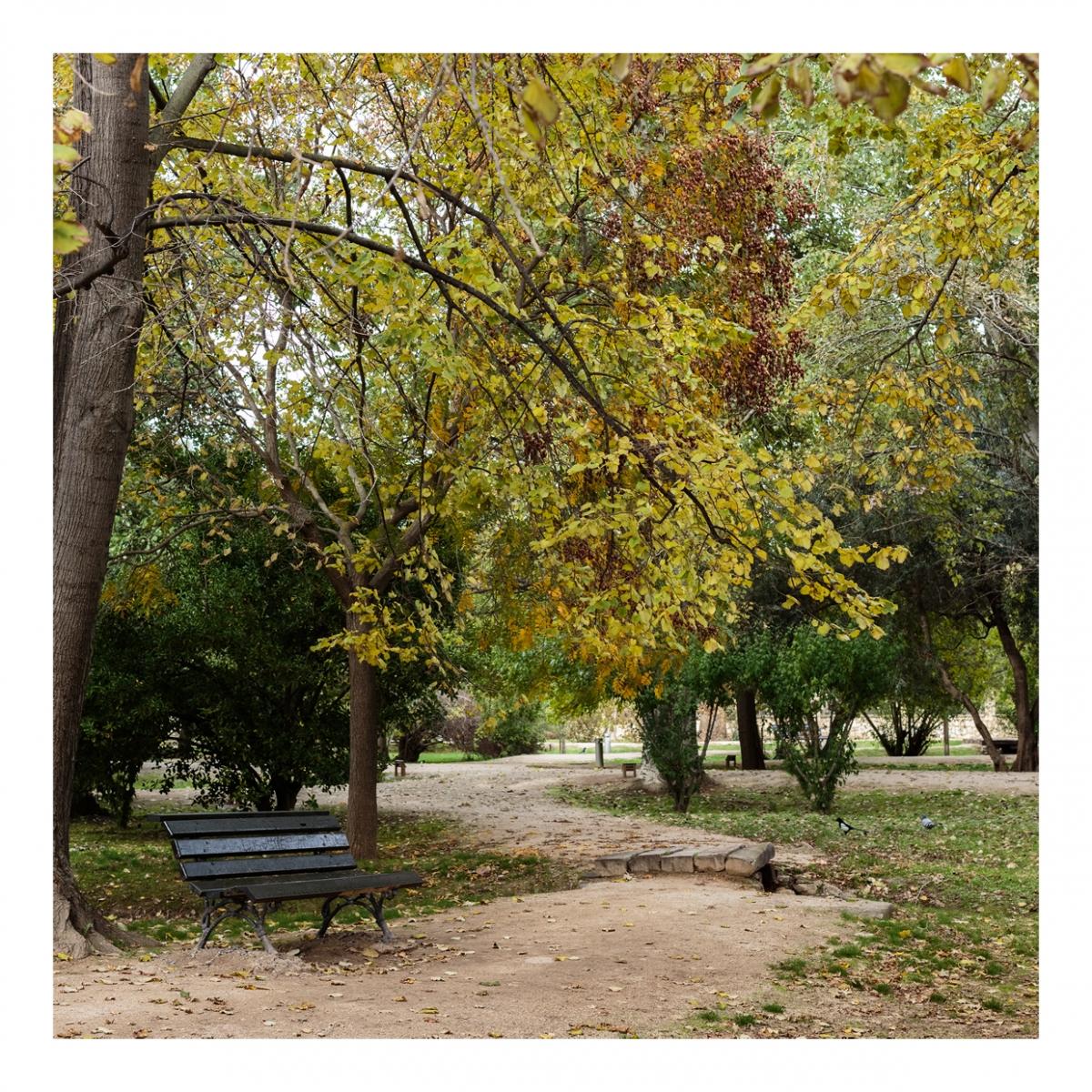 Imagen en la que se ve un parque