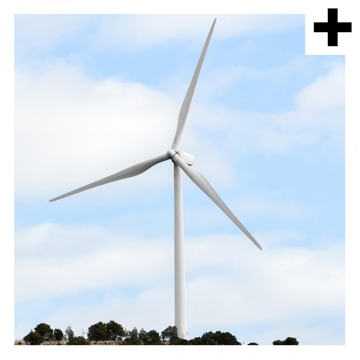 Imagen en la que se ve el plural del concepto molino de viento
