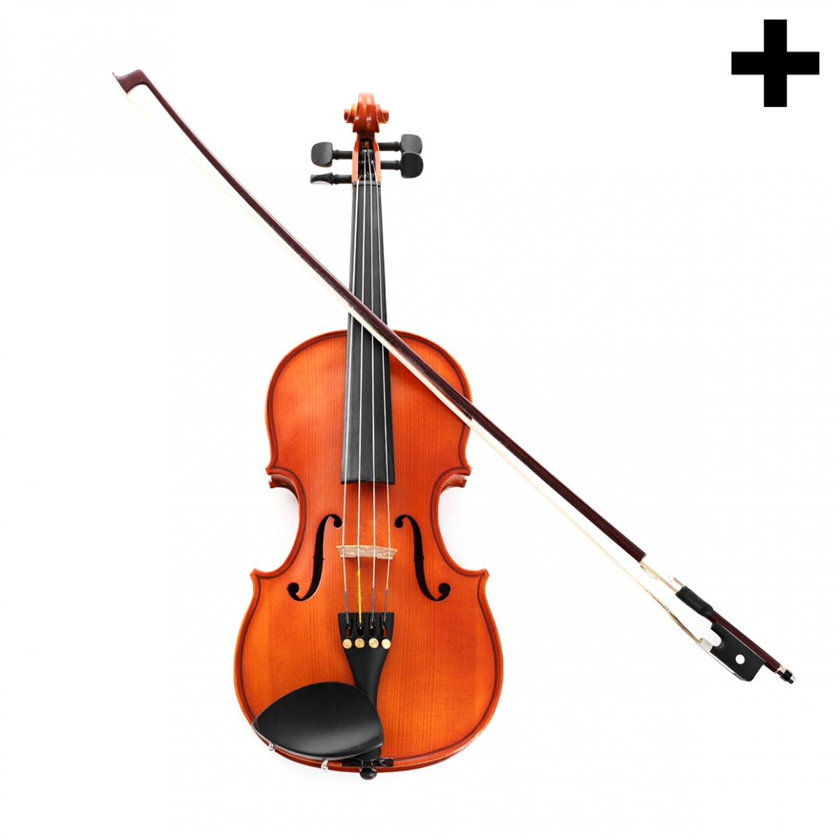 Imagen en la que se ve el plural del concepto violín