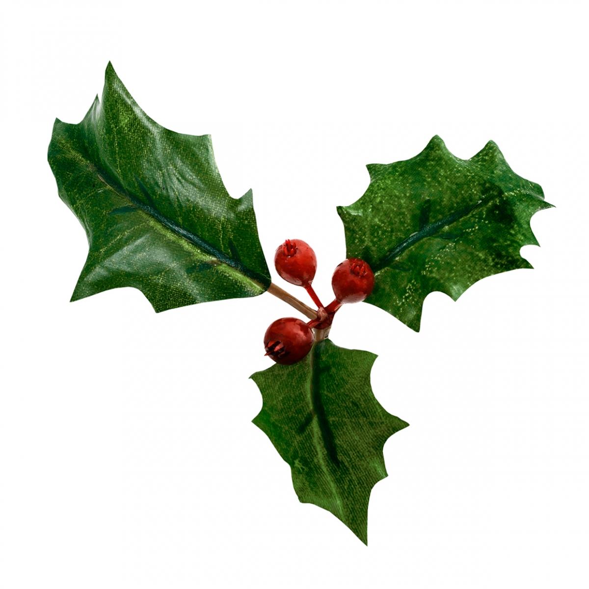 Imagen en la que se ve un acebo de Navidad