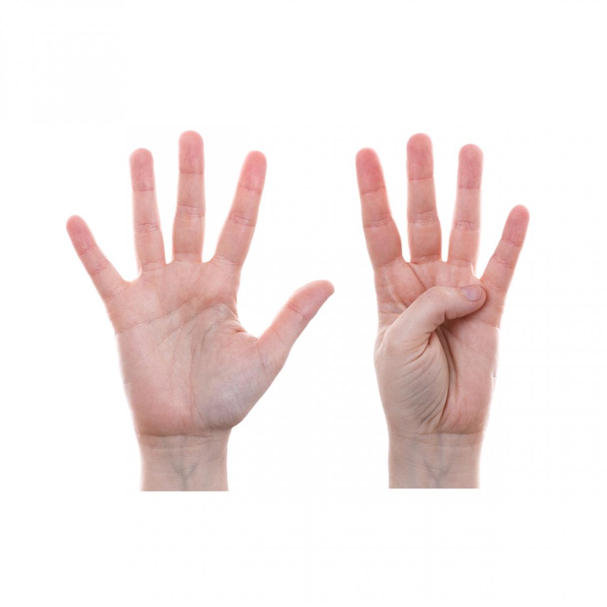 Imagen en la que se representa el número nueve