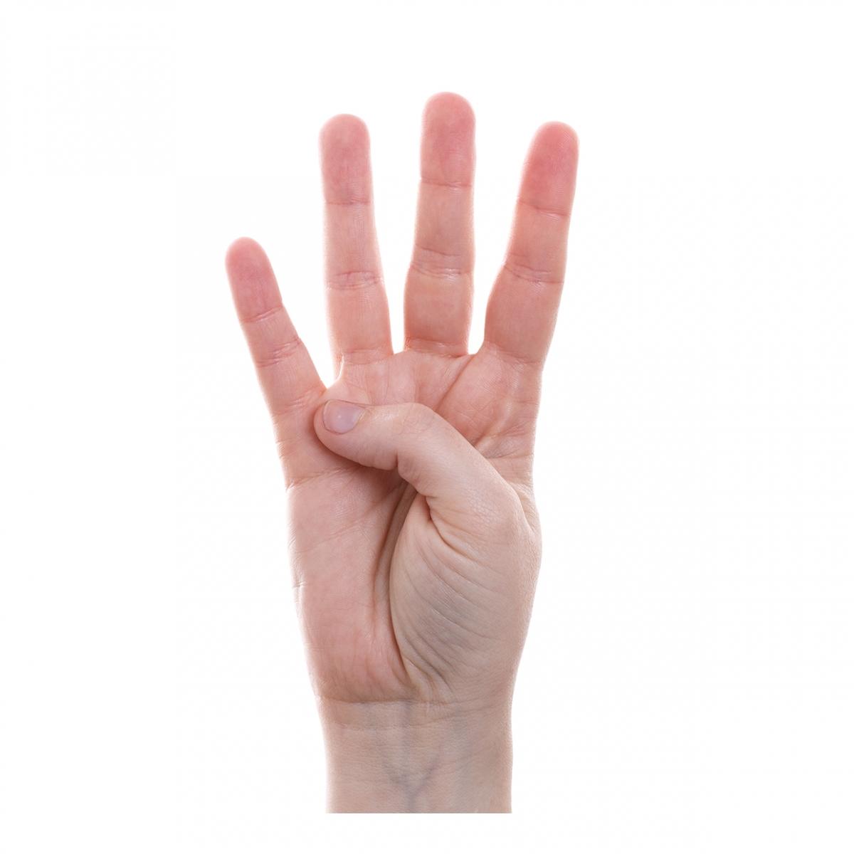 Imagen que representa el número cuatro