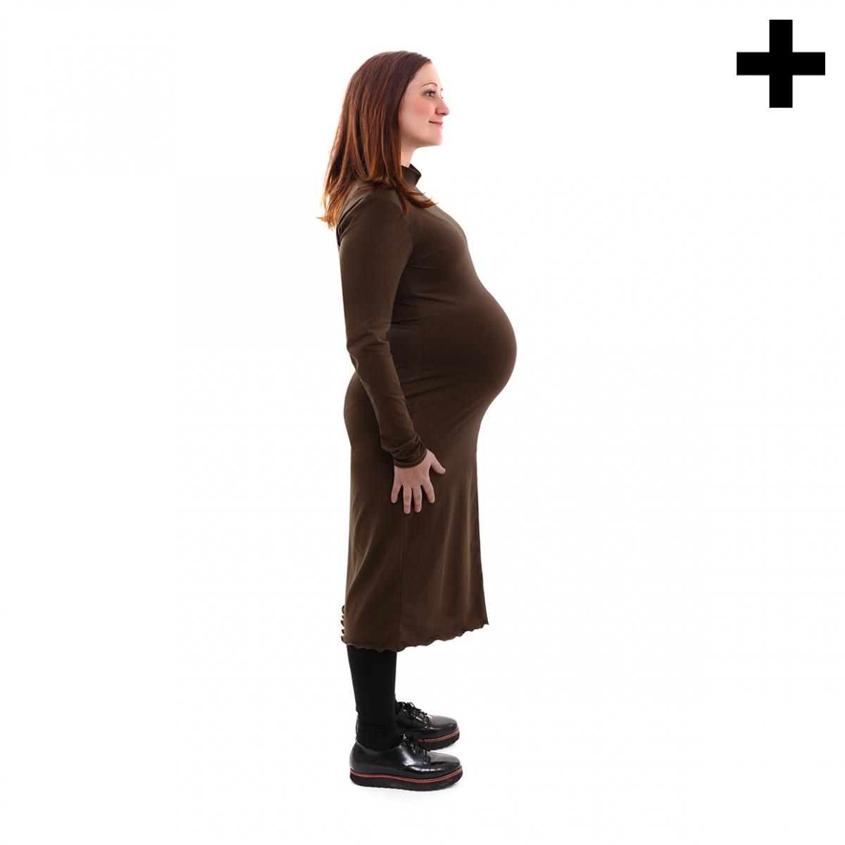 Imagen en la que se ve el plural del concepto embarazada