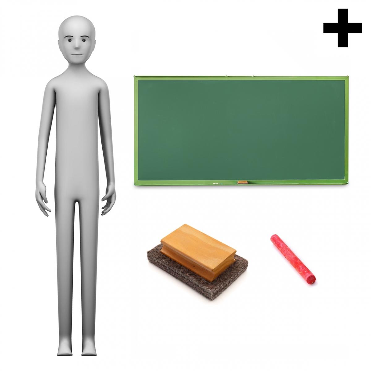 Imagen en la que se ve el plural del concepto profesor