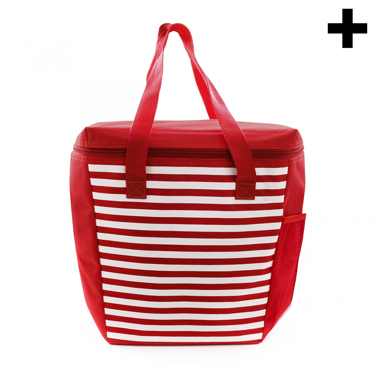 Imagen en la que se ve el plural del concepto bolsa de playa