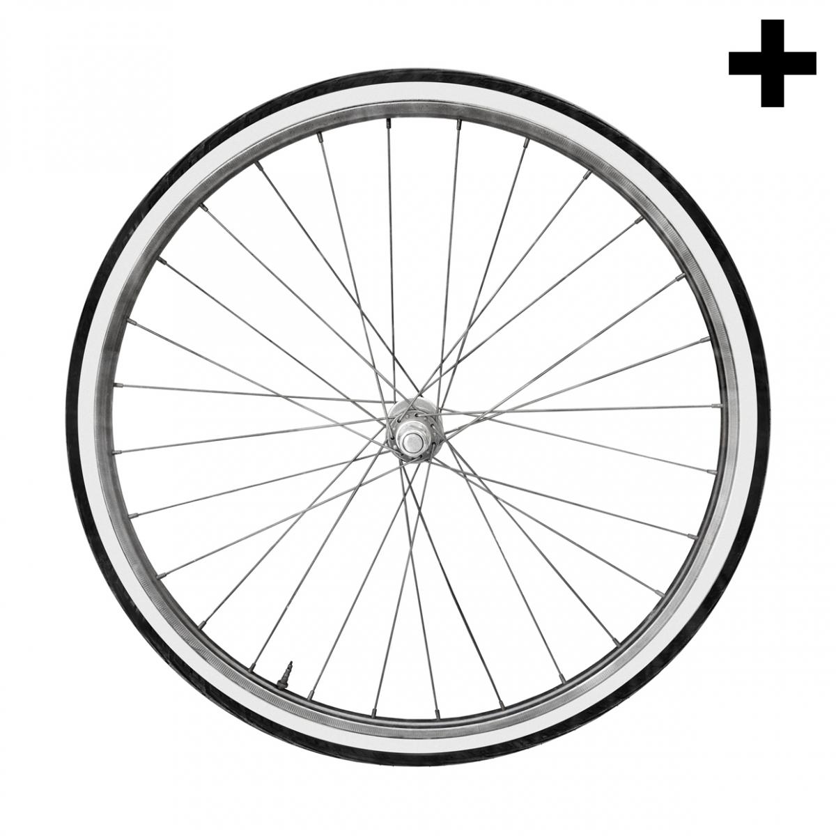 Imagen en la que se ve el plural del concepto rueda de bicicleta