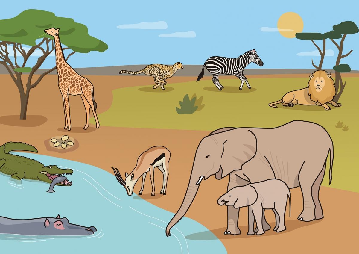 Escena en la que se ven varios animales salvajes en la sabana