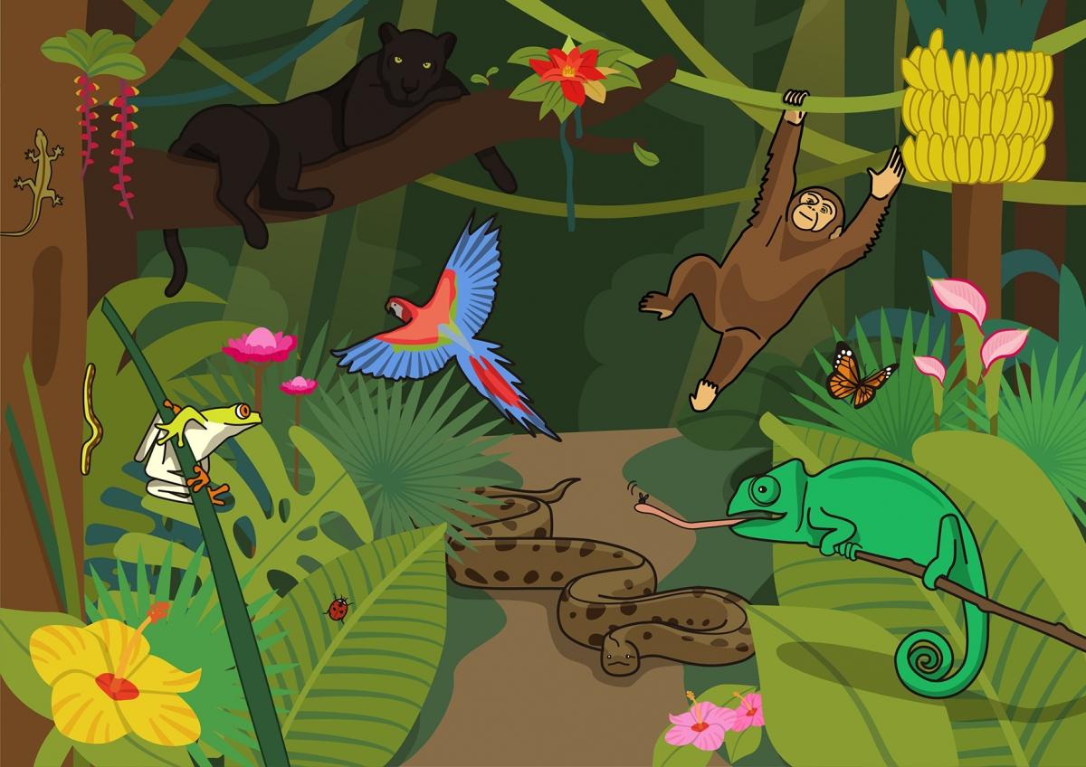 Escena en la que se ven varios animales salvajes en la selva