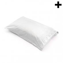 Imagen en la que se ve el plural del concepto almohada