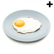 Imagen en la que se ve un plato con un huevo frito cocinado sobre él