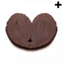 Imagen en la que se ve el plural del concepto palmera de chocolate