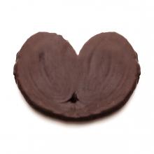 Imagen en la que se ve una palmera de chocolate