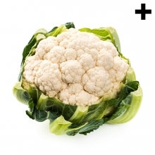 Imagen en la que se ve el plural del concepto coliflor