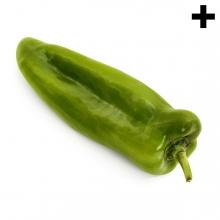 Imagen en la que se ve el plural del concepto pimiento verde