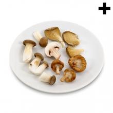 Imagen en la que se ve el plural del concepto plato de setas