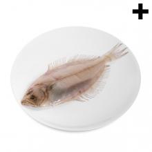 Imagen en la que se ve el plural del concepto gallo pescado