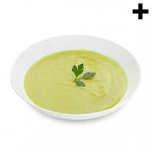 Imagen en la que se ve el plural del concepto crema de verduras