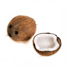 Imagen en la que se ve un coco