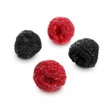 Imagen en la que se ven cuatro moras, dos rojas y dos negras