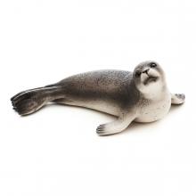 Imagen en la que se ve una foca en perspectiva lateral