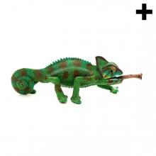 Imagen en la que se ve el plural del concepto camaleón