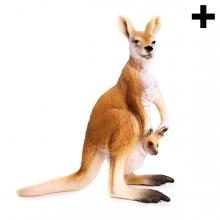 Imagen en la que se ve el plural del concepto canguro