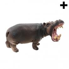 Imagen en la que se ve el plural del concepto hipopótamo