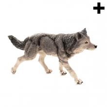 Imagen en la que se ve el plural del concepto lobo