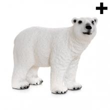 Imagen en la que se ve el plural del concepto oso polar