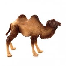 Imagen en la que se ve a un camello