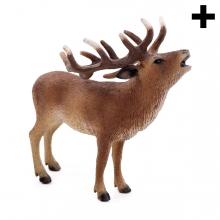 Imagen en la que se ve el plural del concepto ciervo