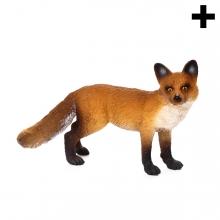 Imagen en la que se ve el plural del concepto zorro