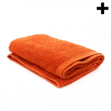 Imagen en la que se ve el plural del concepto toalla