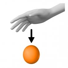 Imagen en la que un objeto se cae de la mano