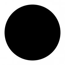 Imagen en la que se ve un círculo de color negro