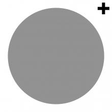 Imagen en la que se ve un círculo de color gris